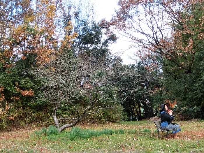 名古屋市 志段味古墳群ツアーその2:白鳥1号墳
